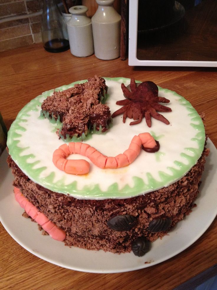 creepy crawly bug cake... with spider, worm and woodlice. Nature cake ...