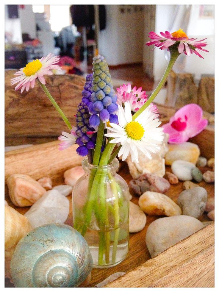 Frühlingsdeko  My own pics  Pinterest