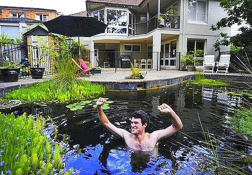 Building a backyard pond by converting your swimming pool for Build a pond in your backyard
