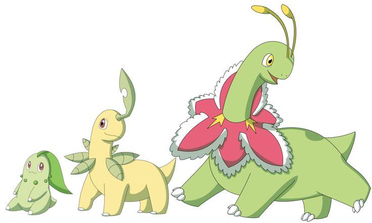 Bayleef Evolution 153 Pokemon Bay...