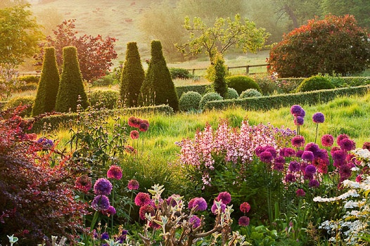Pettifers This Oxfordshire country garden is designed for year-round interest. Photographed by Clive Nichols.