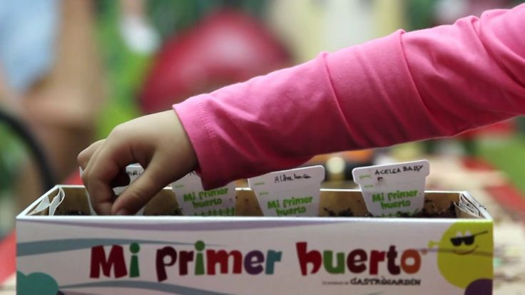 Pinterest discover and save creative ideas - Mi huerto urbano ...