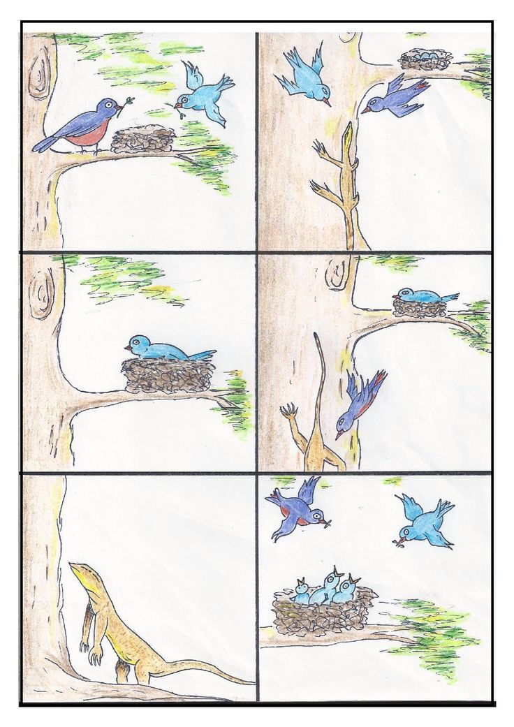 Sequencing Pictures Worksheets – Sequencing Worksheets 1st Grade