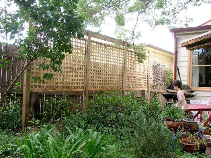 Lattice privacy screen garden ideas pinterest for Privacy lattice panel ideas