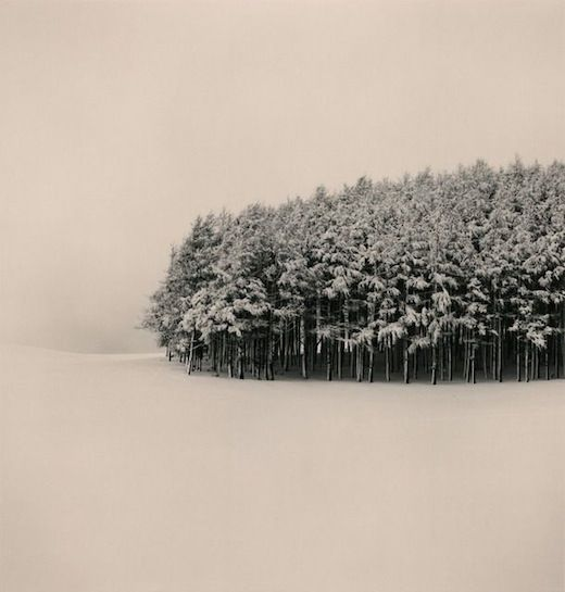 Snow<33