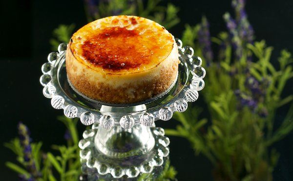 Brulee Cheesecake with Lavender Honey | Cheesecake Recipes | Pinterest