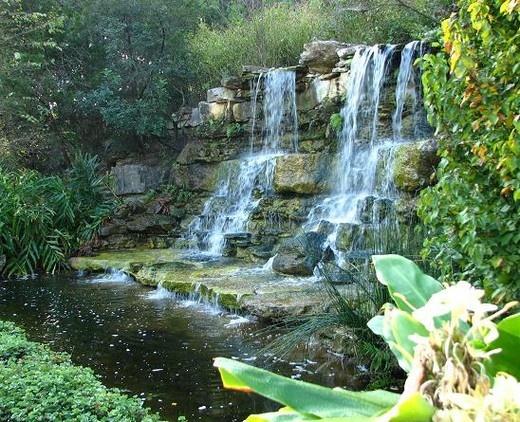 Zilker botanical garden Austin Texas baby Pinterest