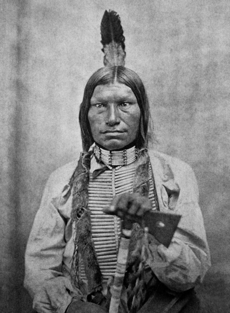 what i miss about my native Frequently asked questions: top 50 questions about american indian tribes do native americans serve in the armed forces of the united states.