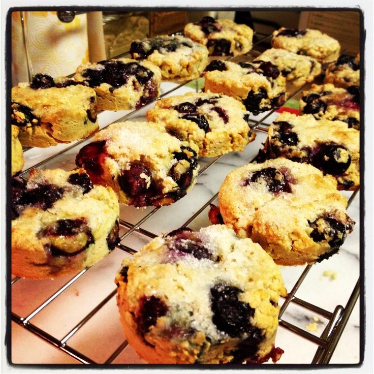 Gluten-Free Blueberry Scones #glutenfree | Blinded by the Bite! Recip ...