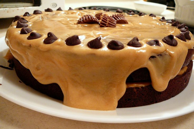 chocolate peanut butter torte | Cakes, cup cakes, icing, pies and swe ...