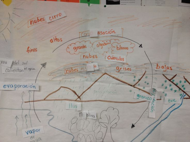 Water Cycle Pictorial/GLAD Strategy   GLAD Strategies   Pinterest