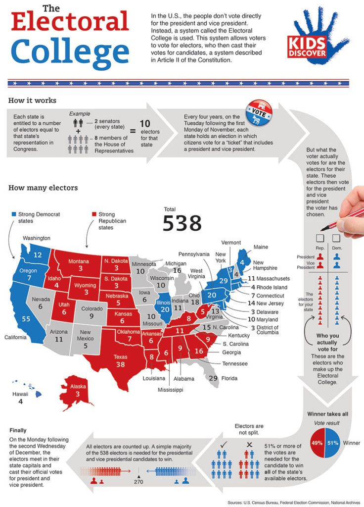 Infographic: The Electoral College - KIDS DISCOVER