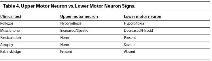 Pin by candice on neuro 2 pinterest What is lower motor neuron disease