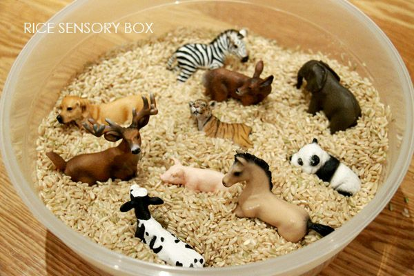 Sensory toddler play: Scoop & hide animal figurines in a bowl of dry brown rice. Great for rainy days