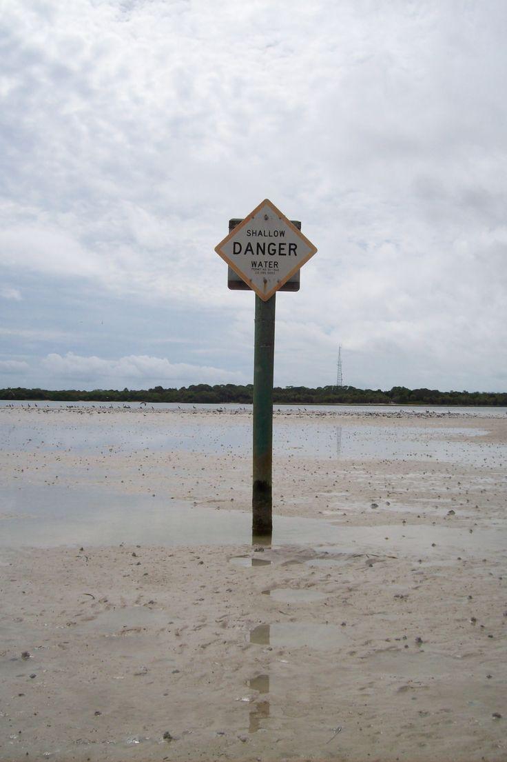 Low tide kayaking fort desoto shell island tierra verde fl pi