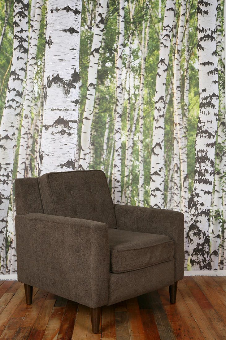 birch tree wall mural
