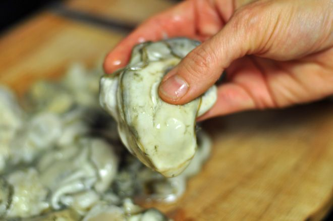 Oyster Stew | Recipes to try | Pinterest