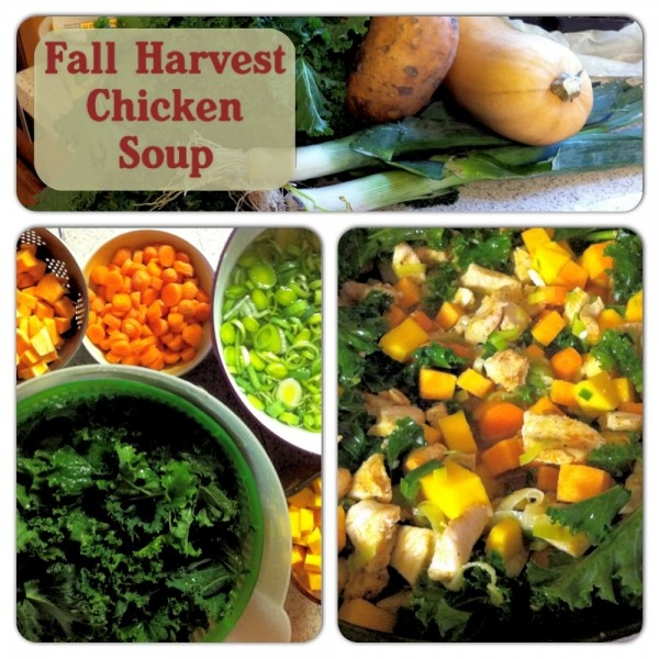 Fall Harvest Chicken Soup | Primally Inspired really yummy soup that ...