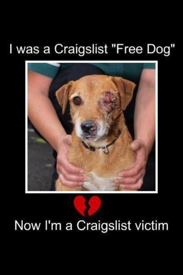 Montgomery Pets Craigslist Autos Post