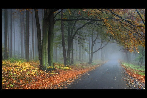 Road The Winter Can Come From by *robertmekis
