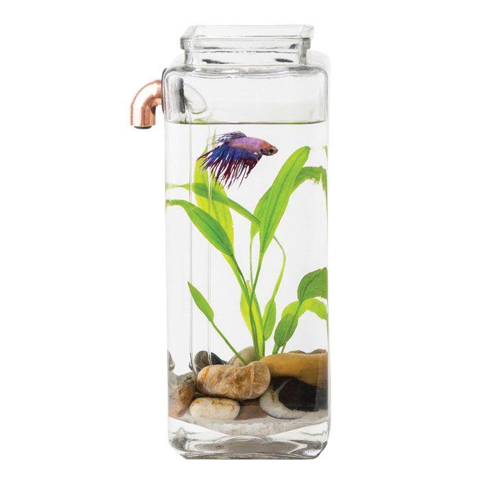 Betta aquarium self cleaning joy studio design gallery for Self cleaning fish tank walmart