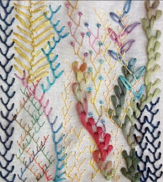 Feather Stitch Sample  Embroidery  Pinterest