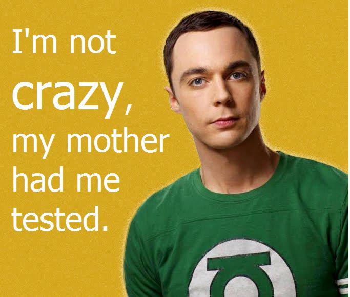 Big Bang Theory Sheldon Gay 56
