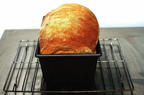 light wheat bread via smitten kitchen