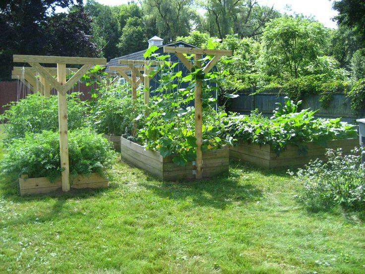 pinterest garden trellis ideas photograph garden trellis i