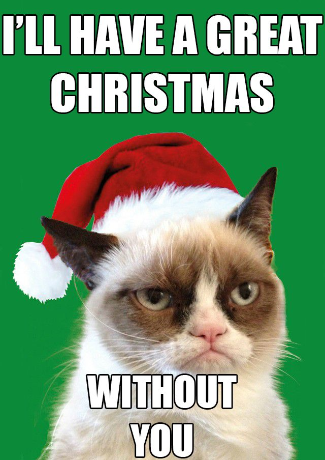 grumpycat cat holiday funny grumpy cat pinterest. Black Bedroom Furniture Sets. Home Design Ideas