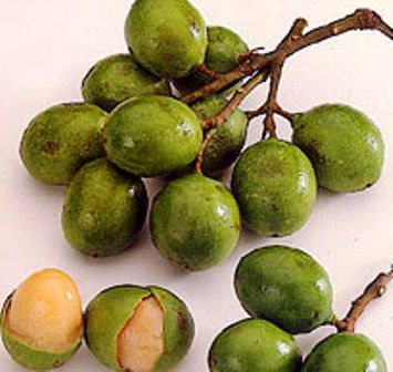 Colombian Fruits | All things Colombia | Pinterest