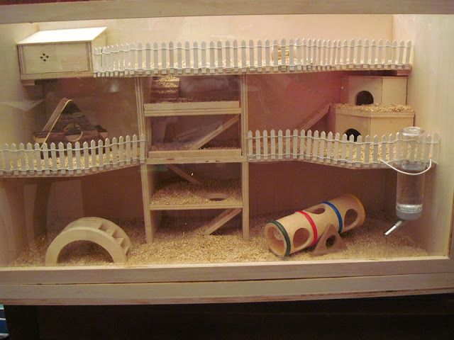 Hamster house dremel work animal spaces pinterest for How to build a hamster cage