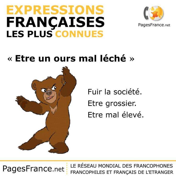 """Expressions françaises : """"ÊTRE UN OURS MAL LÉCHÉ"""""""