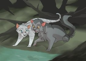 silverstream and graystripe  Silverstream and Graystripe,...