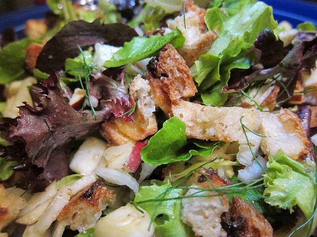 apple fennel panzanella salad | eat drink be merry | Pinterest