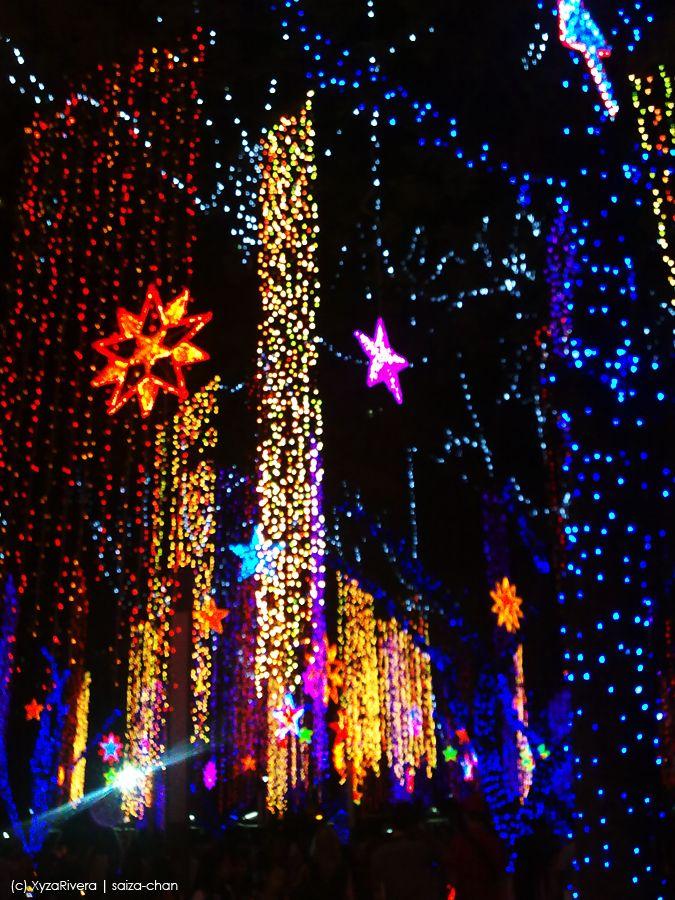 Pin by Seasonal Source on Creative Christmas Lights   Pinterest