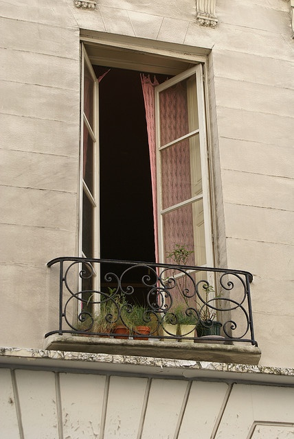 french balcony architectural windows garden flowers