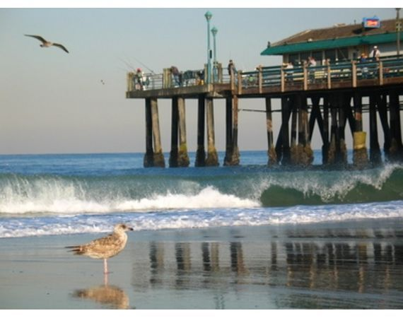 A vibrant city in Los Angeles County, the City of Redondo Beach offers visitors powerful surfing conditions during the winter months and year-round activities such as beach volleyball.