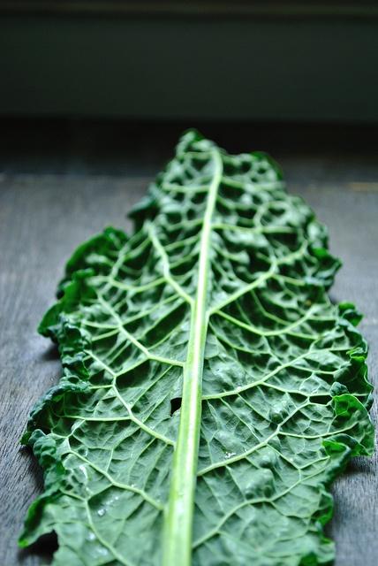 kale salad with orange tarragon dressing | Delicious | Pinterest