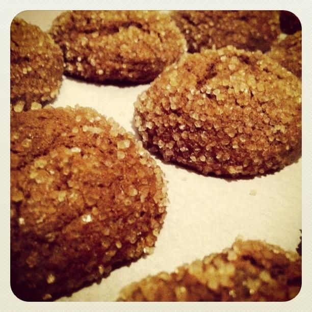 Triple Ginger Cookies. My favorite cookie recipe from 101 Cookbooks!
