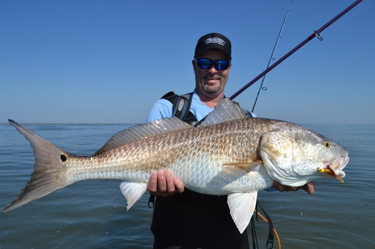 Red snapper fishing this weekend only things to do on for Red fish hilton head