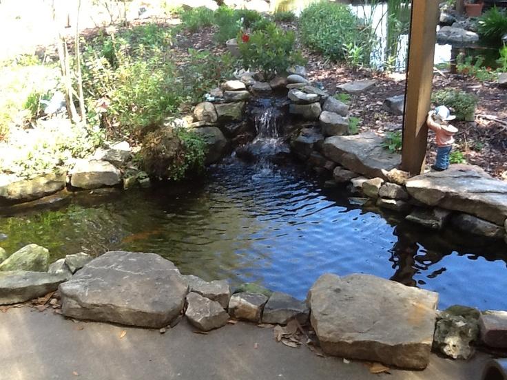 Small koi pond ponds pinterest for Little fish pond
