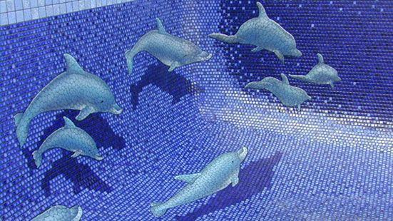 Teresa butler facebook rachael edwards for Dolphin tile mural