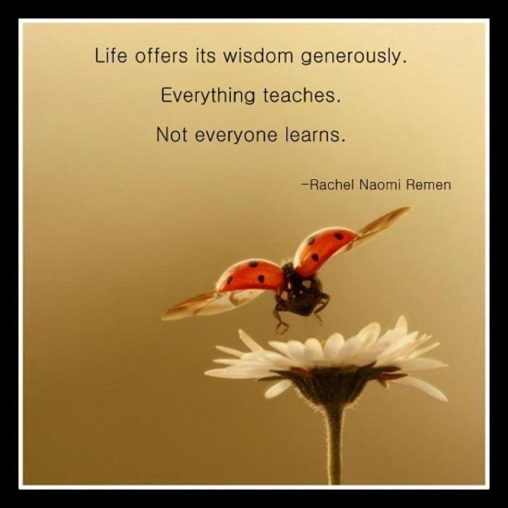 Rachel Naomi Remen Quotes. QuotesGram