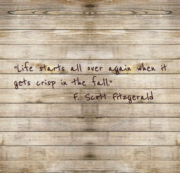 """Life starts all over again when it gets crisp in the fall.""            F. Scott Fitzgerald"
