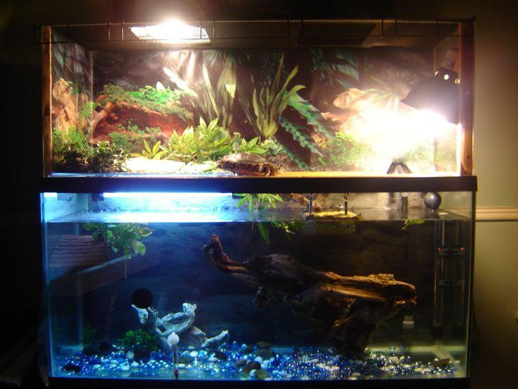 Turtle Tank Basking Ideas Tank Basking Platform Indoor