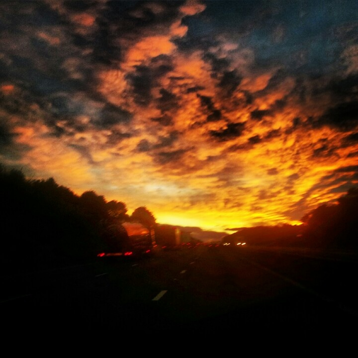 Red Sky at Night... Almost home. | Birding Trip to Suffolk | Pinterest