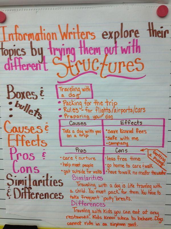 informative essay writing
