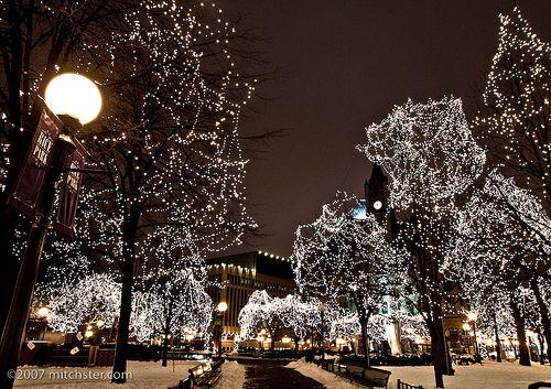 magical christmas lights
