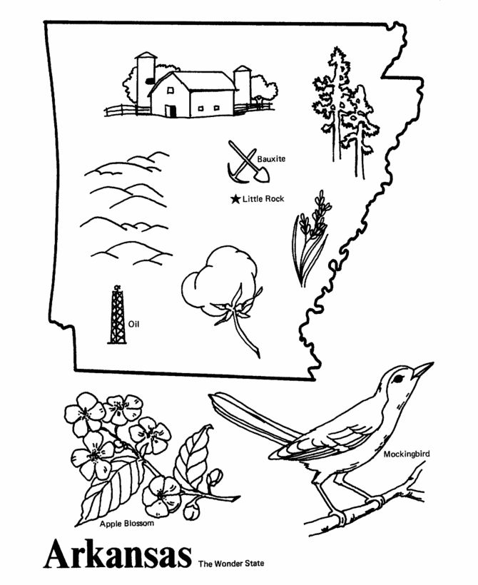 Arkansas state coloring page coloring pages us history for Arkansas state flag coloring page